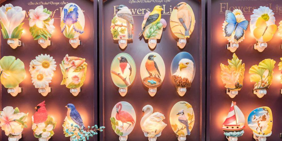Wild birds interior 3